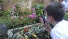 jardim012